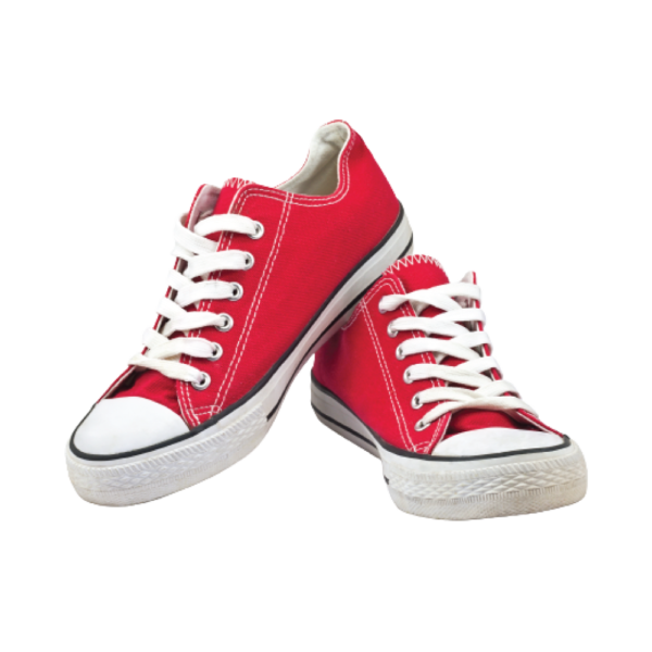 Sko-shoes